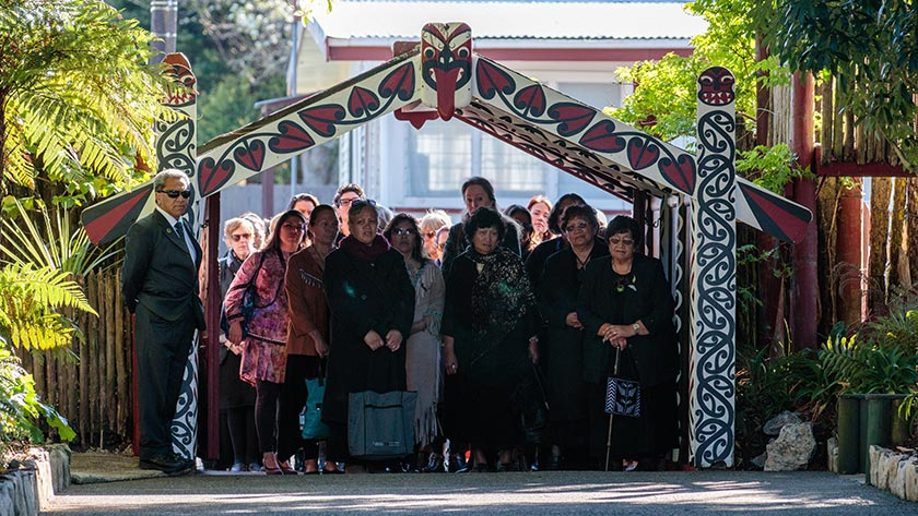 New Māori health authority needs independence and accountability