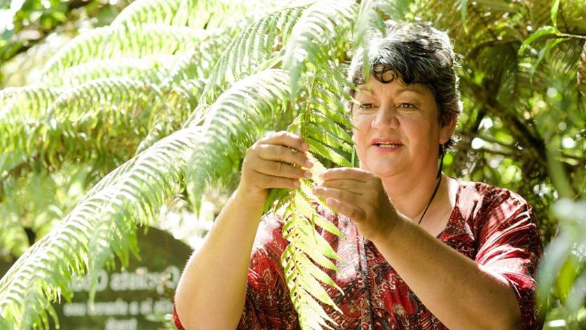 Rongoā practitioner says people are better for having a choice – 'no one system has all the answers' Donna Kerridge (Tainui) is a rongoā practitioner who travels the country to reach those in need.